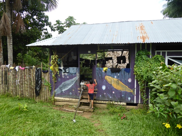 Art house paintings in the Mocagua community